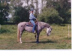 Pferd: Ray Ben Gray (WB)
